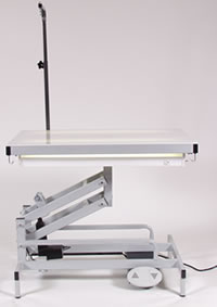 Edemco F900 Electric Lighted Grooming Table